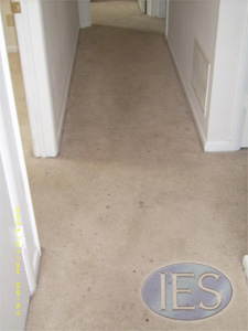 Residential carpet before hot water extractiion - Southern Maryland