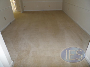 Rental Unit after restorative carpet cleaning by IES Clean Pro - Dunkirk MD