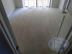 Rental Unit after restoration carpet cleaning by IES Clean Pro - Dunkirk MD