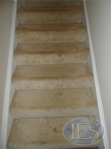Stairs before carpet cleaning by IES Clean Pro - Dunkirk MD