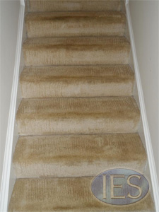 Stairs after carpet cleaning by IES Clean Pro - Dunkirk MD