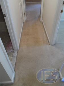 Hallway after carpet cleaning by IES Clean Pro - Southern Baltimore
