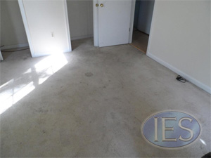 Dirty carpet before carpet cleaning by IES Clean Pro - Calvert County