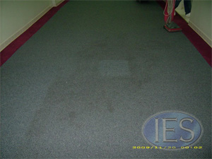 Commercial Carpet Cleaning Southern Maryland