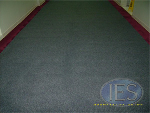Commercial Carpet Hot Water Extraction Method After Cleaning