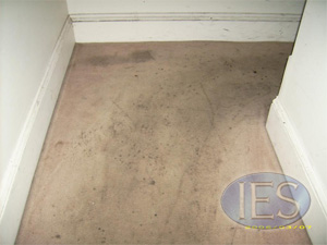 carpet before cleaning - Carpet Cleaning Calvert County MD