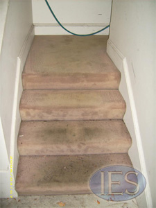 Stairs carpet before cleaning - Carpet Cleaning Southern Maryland