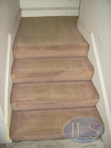 Stairs carpet after cleaning by IES - Carpet Cleaning Southern Maryland