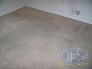 Residential carpet before hot water extractiion - Calvert County