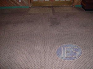 Carpet Cleaning Calvert County - Before carpet cleaning by Indoor Environmental Services