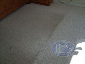 before / after - carpet cleaning - Calverty County Maryland