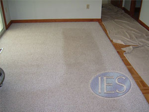 Cleaning white carpet - Calvert County MD