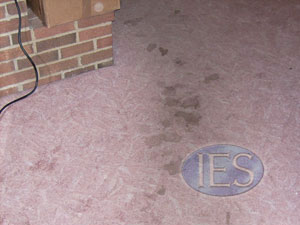 Residential carpet cleaning Calvert County Maryland - Before
