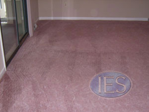 Residential carpet cleaning Calvert County Maryland - After