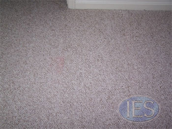 Carpet Repair Southern Maryland - Carpet Cleaning Dunkirk MD