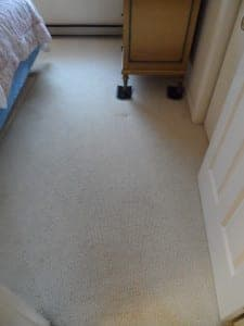 After Carpet Cleaning Service