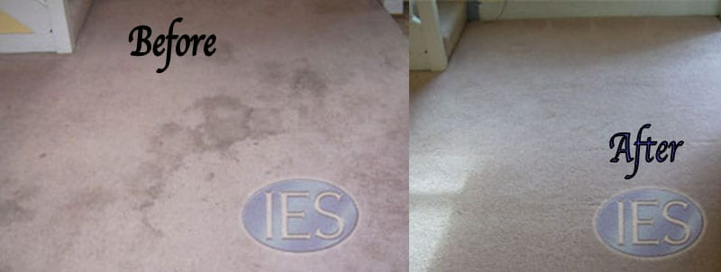 Carpet Cleaning Owings MD
