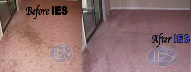 Carpet Cleaning SOLOMONS MD