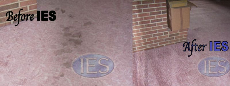 RESIDENTIAL CARPET CLEANING SOLOMONS MD