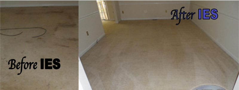 before and after carpet cleaning Hot Water Extraction