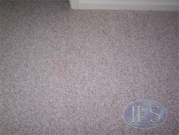 After:  Cut out damaged area and replaced with donor carpet