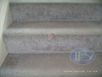 BEFORE: Damaged area on bull nose area of stairs