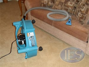 Upholstery Cleaning Tool & Drying Equipment